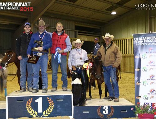 NRHA French Reining Championships September 2015